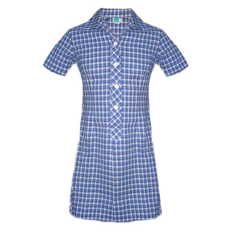 Traditional Style With Designated Blue & White Check Fabric